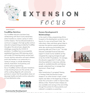 Sample copy of the Sauk County Extension Focus monthly report.